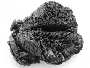 Обнаружен мозг возрастом более 4000 лет