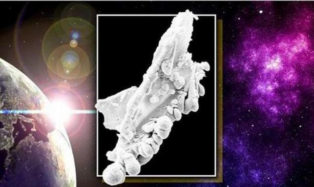 Одно из доказательств существования жизни за пределами Земли