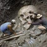 Скелеты огромных размеров