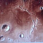 Изображение цветка на поверхности Марса