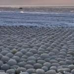 Финский залив покрылся непонятными ледяными шарами