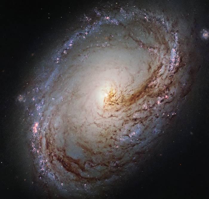 Галактика M96 глазами космического телескопа Хаббл